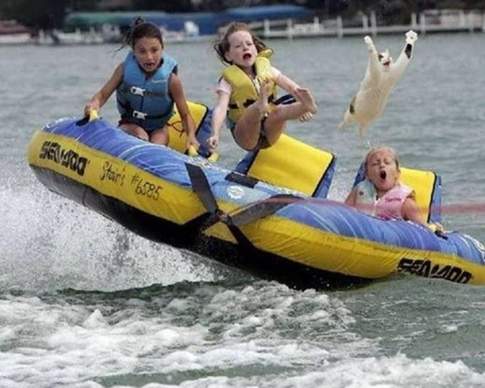 Drei Kinder und eine Katze sitzen in einem Schlauchboot. Das Boot scheint von einem Motorboot über die Wellen gezogen zu werden. Duch die Wellen werden die Kinder und die Katze in die Höhe geschleudert, die Katze fliegt in hohem Bogen aus dem Boot heraus.