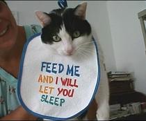 Füttere mich!