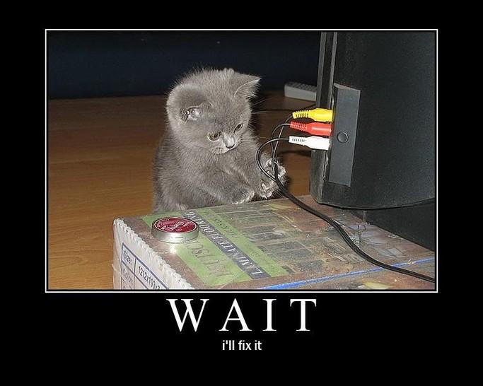 """Eine kleine Katze steht vor einem Fernseher mit angeschlossenen Kabeln. Sie schaut auf die Kabel und berührt sie mit den Pfoten. Darunter steht der Text: """"Wait. I'll fix it""""."""