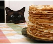 Viele Pfannkuchen!