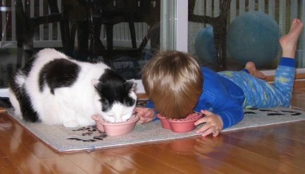 Ein Kind und eine Katze liegen nebeneinander auf einem Teppich. Vor jedem steht ein Schälchen mit Essen. Beide essen aus ihrer Schale.