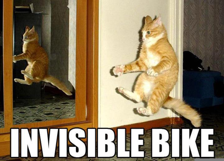 """Eine Katze springt durch die Luft. Es sieht so aus, als würde sie auf einem unsichtbaren Fahrrad oder Motorrad fahren. Das steht auch als Text im Bild: """"Invisible Bike""""."""